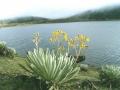 105. Laguna de Mucubaj