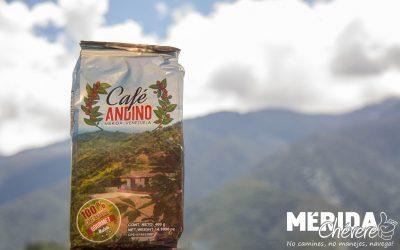 Grupo Café Andino Mérida 6