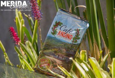 Grupo Café Andino Mérida 7