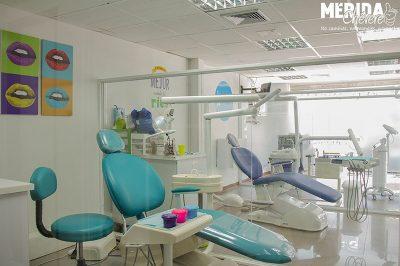 Premium Dental  5