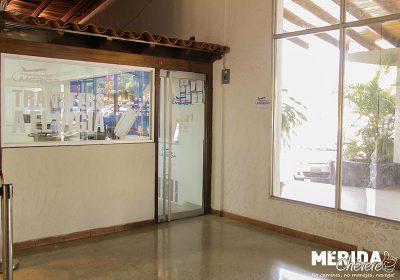 Transfers Mérida 1